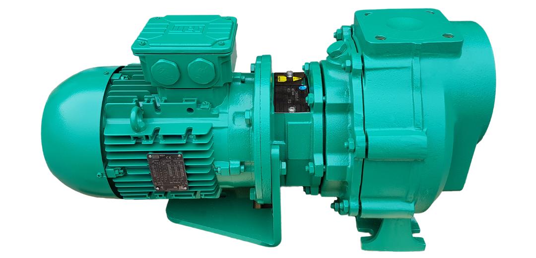 azcue-pumps-2