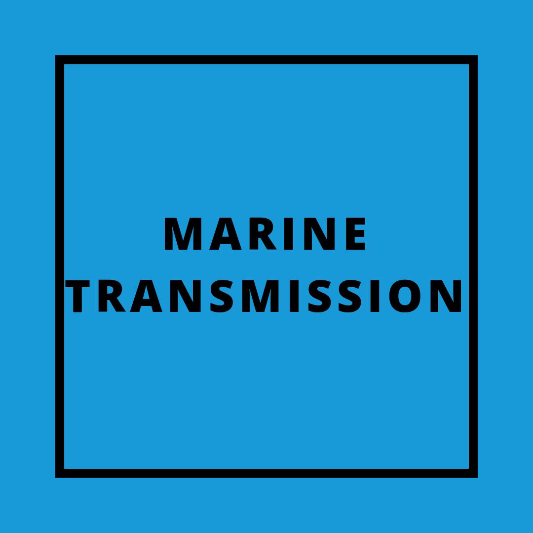 marine-transmission
